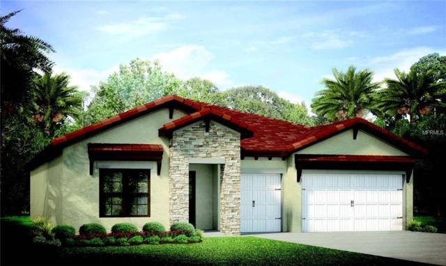 135 Pescador Place, North Venice, FL 34275 (MLS #N6102656) :: Revolution Real Estate