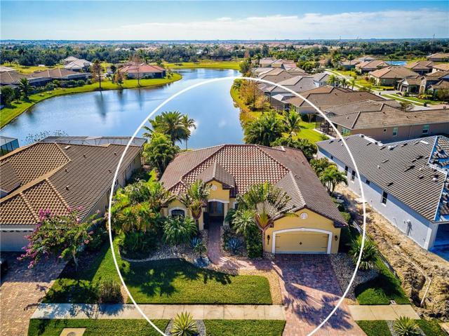 13659 Brilliante Dr, Venice, FL 34293 (MLS #N6103430) :: Dalton Wade Real Estate Group