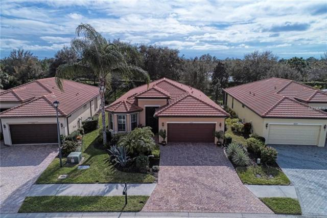 20235 Pezzana Drive, Venice, FL 34292 (MLS #N6104094) :: Cartwright Realty