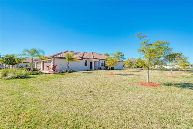 20513 Benissimo Drive, Venice, FL 34293 (MLS #N6104153) :: Medway Realty