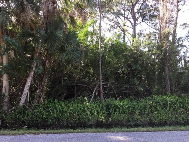 Duke Road, Venice, FL 34293 (MLS #N6104336) :: Sarasota Gulf Coast Realtors