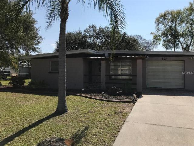 224 Durian Road, Venice, FL 34293 (MLS #N6104347) :: Medway Realty