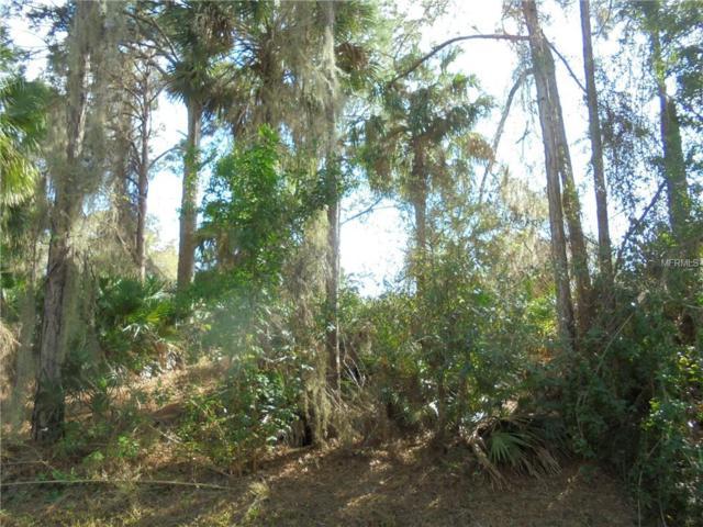 Shady Avenue, North Port, FL 34286 (MLS #N6104473) :: Team Bohannon Keller Williams, Tampa Properties