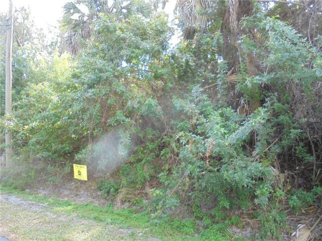 Shady Avenue, North Port, FL 34286 (MLS #N6104474) :: Team Bohannon Keller Williams, Tampa Properties
