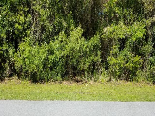 Gaitor Terrace, North Port, FL 34291 (MLS #N6104640) :: Baird Realty Group