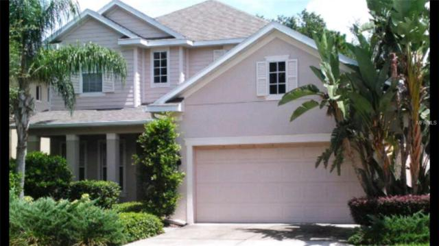 3223 Park Green Drive, Tampa, FL 33611 (MLS #N6104709) :: The Duncan Duo Team