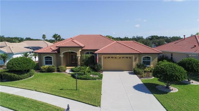 172 Valencia Lakes Drive, Venice, FL 34292 (MLS #N6104848) :: Baird Realty Group