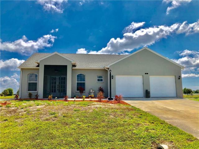 6 Pheasant Lane, Placida, FL 33946 (MLS #N6105009) :: Medway Realty