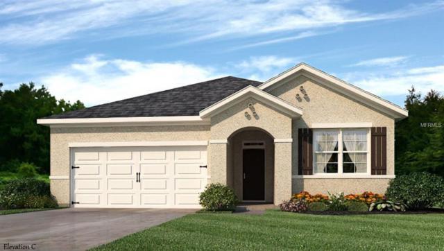 358 San Ambrosio Street, Punta Gorda, FL 33983 (MLS #N6105106) :: Delgado Home Team at Keller Williams