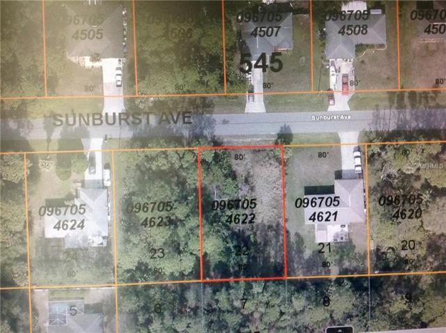 Sunburst Avenue, North Port, FL 34286 (MLS #N6105287) :: Cartwright Realty