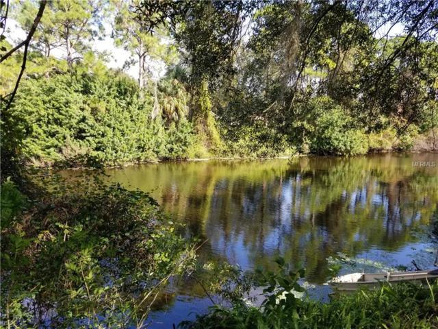 Langtree Avenue, North Port, FL 34286 (MLS #N6105552) :: Medway Realty