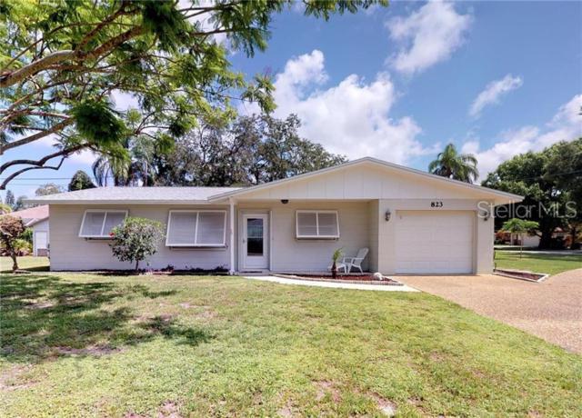 823 Bradenton Road, Venice, FL 34293 (MLS #N6106010) :: Delgado Home Team at Keller Williams