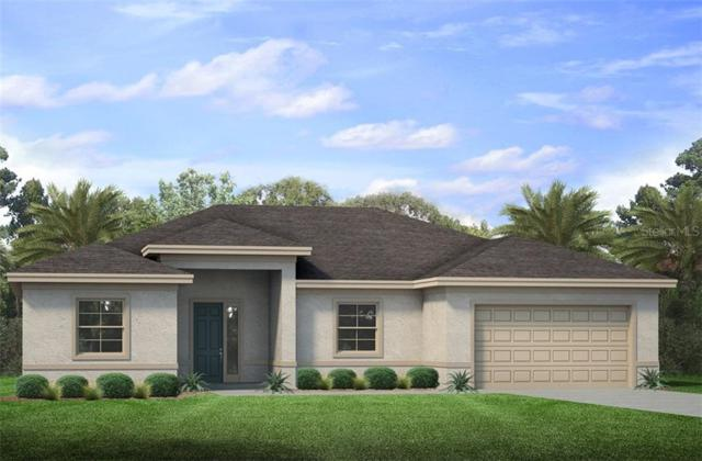 14331 Dafoe Street, Port Charlotte, FL 33981 (MLS #N6106323) :: The Edge Group at Keller Williams