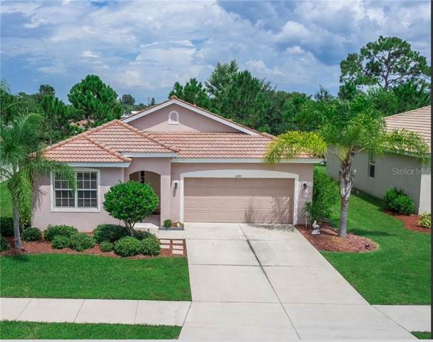 6390 Falcon Lair Drive, North Port, FL 34287 (MLS #N6106355) :: Delgado Home Team at Keller Williams