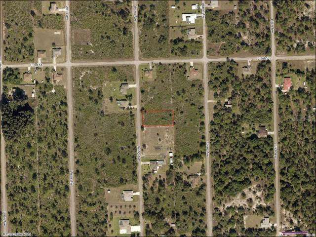 216 Irving Avenue, Lehigh Acres, FL 33936 (MLS #N6106854) :: Cartwright Realty