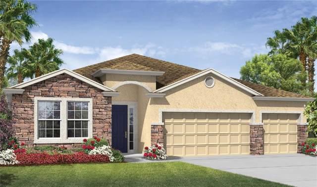 25224 Lahore Lane, Punta Gorda, FL 33983 (MLS #N6106965) :: White Sands Realty Group