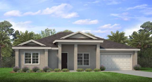 8185 Consul Street, Port Charlotte, FL 33981 (MLS #N6107101) :: The Brenda Wade Team