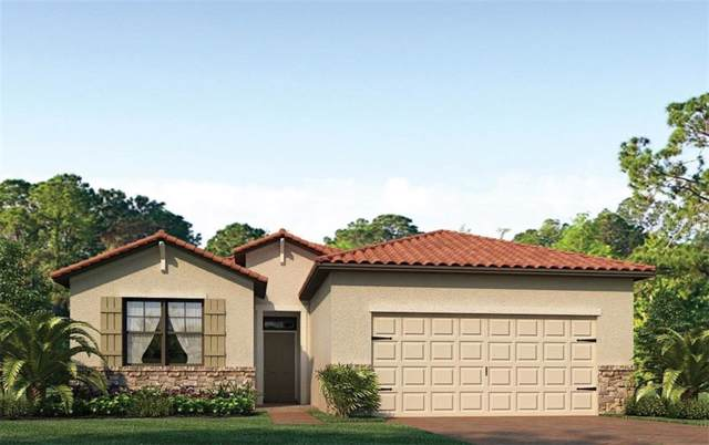 245 Calmar Way, North Venice, FL 34275 (MLS #N6107524) :: Cartwright Realty