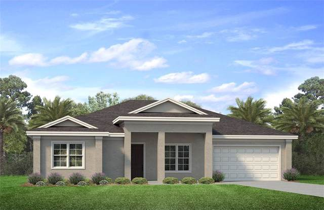8228 Walbert Street, Port Charlotte, FL 33981 (MLS #N6107583) :: The BRC Group, LLC