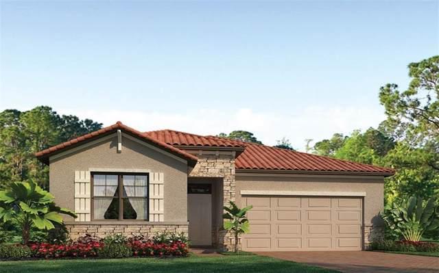 249 Calmar Way, North Venice, FL 34275 (MLS #N6108010) :: Sarasota Home Specialists