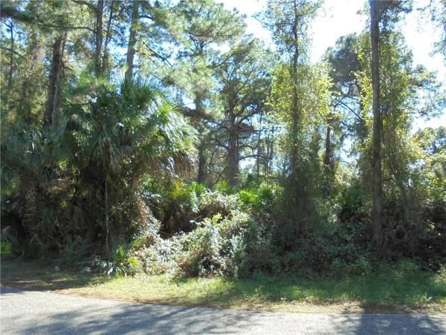 Mallicoat Road, North Port, FL 34288 (MLS #N6108043) :: The Heidi Schrock Team