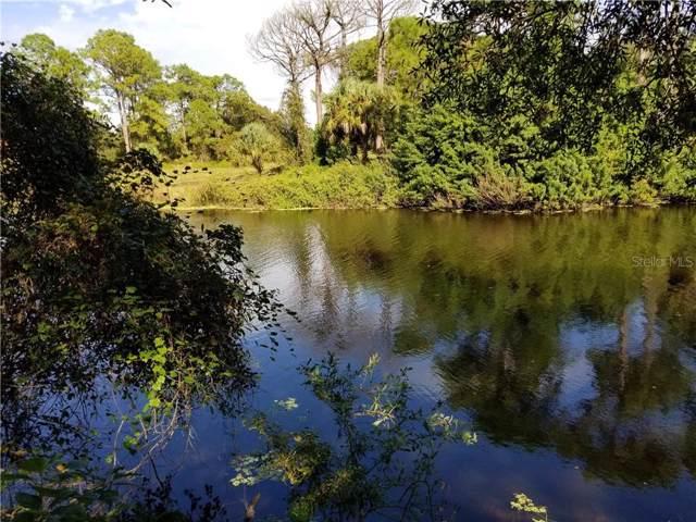 Langtree Avenue, North Port, FL 34286 (MLS #N6108504) :: Medway Realty