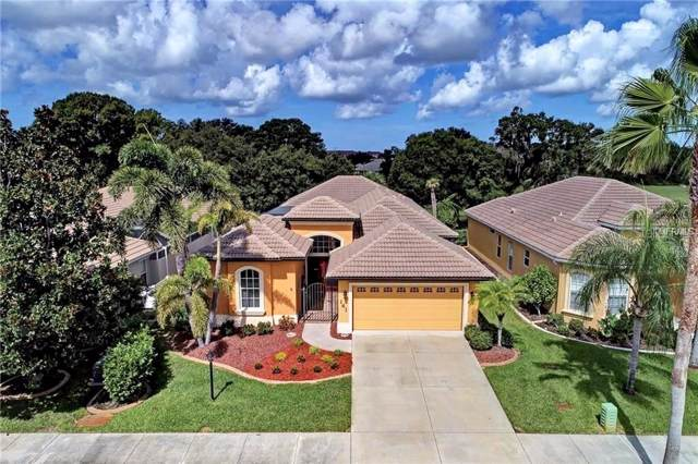 141 Valencia Lakes Drive, Venice, FL 34292 (MLS #N6108807) :: Baird Realty Group