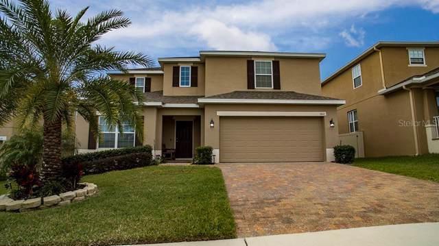 1611 Grouse Gap, Minneola, FL 34715 (MLS #N6108828) :: Cartwright Realty