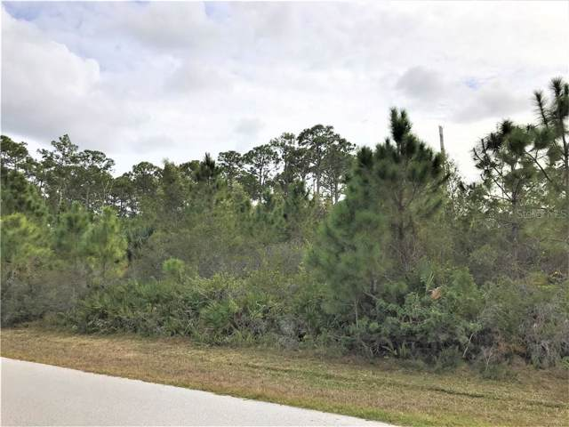 13189 Gorman Avenue, Port Charlotte, FL 33981 (MLS #N6108831) :: Griffin Group