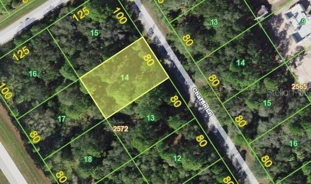 1355 Chaffin Lane, Port Charlotte, FL 33953 (MLS #N6109219) :: GO Realty