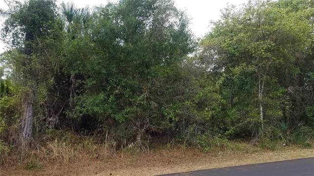 Mendavia Terrace, North Port, FL 34286 (MLS #N6109833) :: Team Bohannon Keller Williams, Tampa Properties