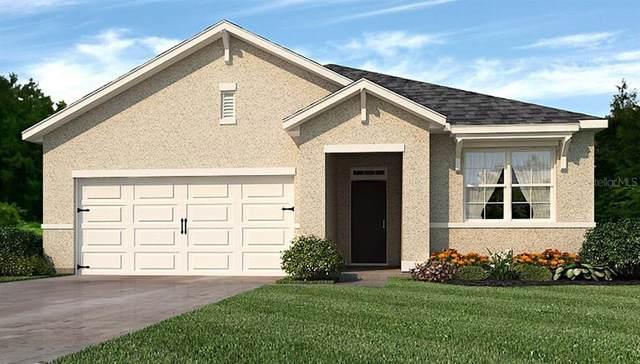 25236 East Lenox Circle, Punta Gorda, FL 33950 (MLS #N6109893) :: Alpha Equity Team