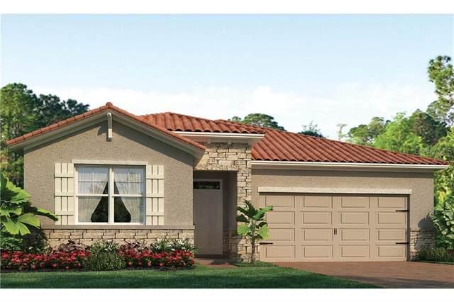257 Calmar Way, North Venice, FL 34275 (MLS #N6110013) :: Cartwright Realty