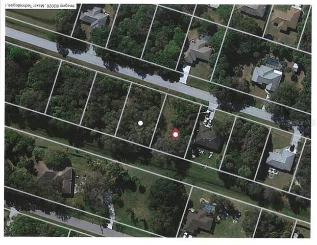 Nansen Lane, North Port, FL 34286 (MLS #N6110544) :: Team Bohannon Keller Williams, Tampa Properties