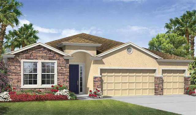 25404 Panache Court, Punta Gorda, FL 33983 (MLS #N6110764) :: Premium Properties Real Estate Services