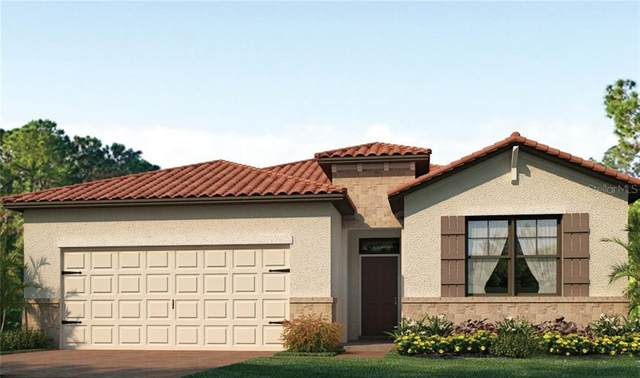 11969 Lovegrass Street, Venice, FL 34293 (MLS #N6110873) :: The Robertson Real Estate Group