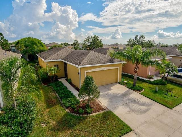 11815 Tempest Harbor Loop, Venice, FL 34292 (MLS #N6111007) :: Rabell Realty Group