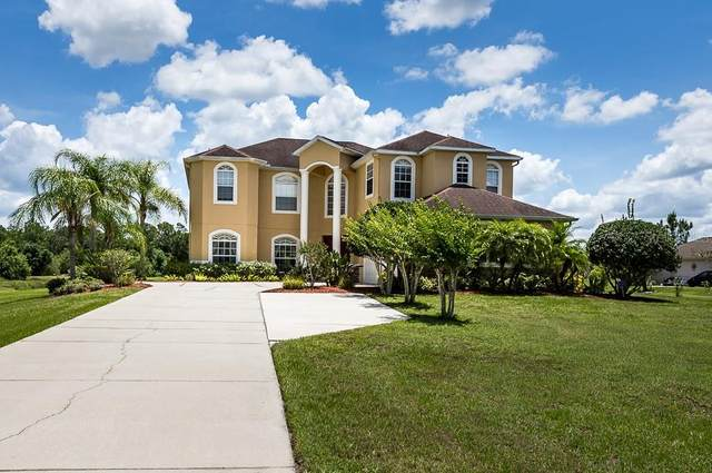 5206 Deer Forest Place, Parrish, FL 34219 (MLS #N6111255) :: Medway Realty