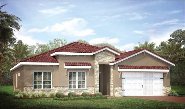 24344 Riverfront Drive, Punta Gorda, FL 33980 (MLS #N6111412) :: Lockhart & Walseth Team, Realtors
