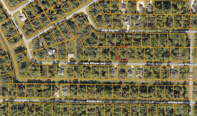 Lady Slipper Avenue, North Port, FL 34291 (MLS #N6111997) :: Young Real Estate