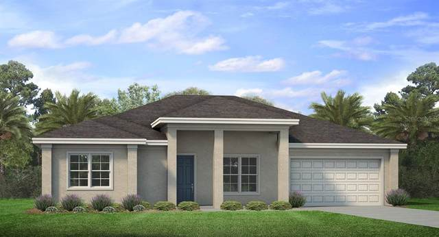 1156 Capricorn Boulevard, Punta Gorda, FL 33983 (MLS #N6112027) :: Burwell Real Estate