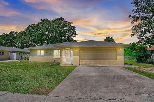 456 W Seminole Drive, Venice, FL 34293 (MLS #N6112187) :: Team Buky