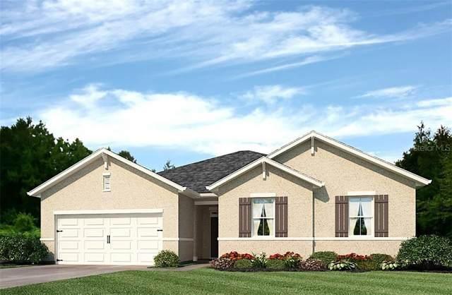26602 Barranquilla Avenue, Punta Gorda, FL 33983 (MLS #N6112401) :: Prestige Home Realty