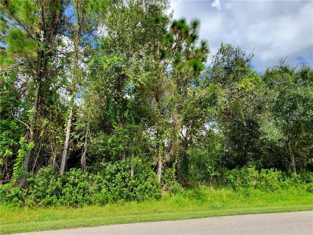 23184 Nancy Avenue, Port Charlotte, FL 33952 (MLS #N6112428) :: Realty Executives Mid Florida
