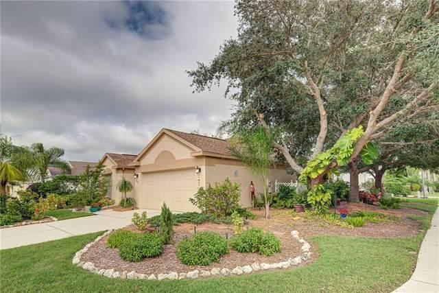 339 Fareham Drive, Venice, FL 34293 (MLS #N6112693) :: Medway Realty
