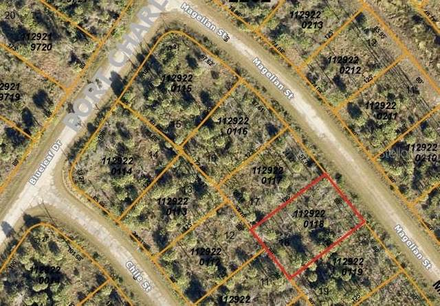 Magellan Street, North Port, FL 34288 (MLS #N6112728) :: Pristine Properties