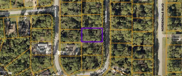 Halacka Road, North Port, FL 34288 (MLS #N6112770) :: Carmena and Associates Realty Group