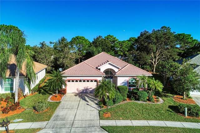 2316 Falcon Trace Lane, Nokomis, FL 34275 (MLS #N6112810) :: The Hesse Team