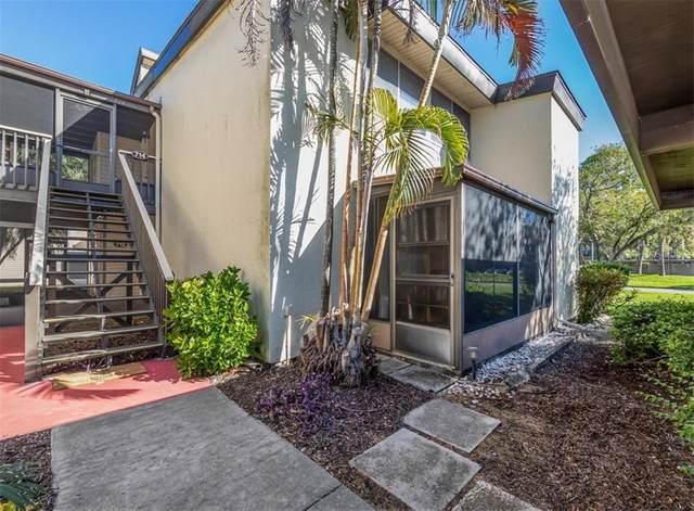 712 White Pine Tree Road #77, Venice, FL 34285 (MLS #N6112820) :: Medway Realty