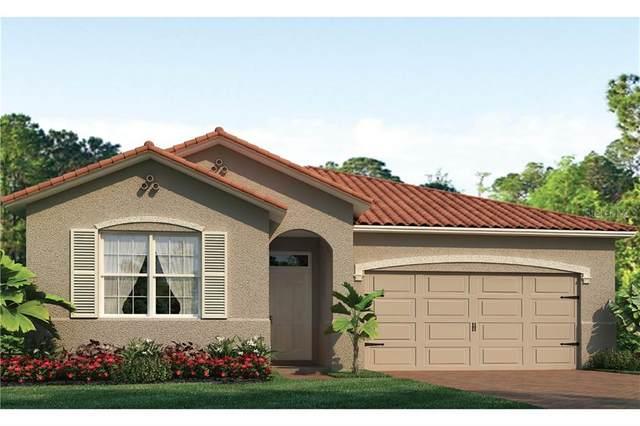 113 Vinadio Boulevard, North Venice, FL 34275 (MLS #N6112893) :: Pepine Realty